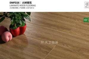 大卫地板DWFD26 火树银花:创造优雅幸福家居生活盘锦